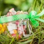 Świąteczna sesja dla Ciuciu Cukier Artist